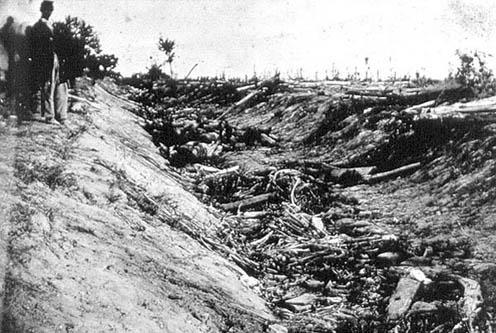 Confederate Dead in Bloody Lane by Alexander Gardner
